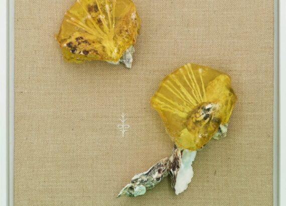 Valentinaki, Post-Plastik-Fauna XII, 2020, resina, conchiglia d'ostrica, cotton fioc, filo per ricamo su tela, 54x44 cm