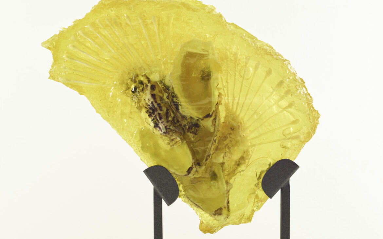 Valentinaki, Scultura Post-Plastic-Fauna II, 2020, resina, conchiglia d'ostrica, cotton fioc, 40x32x4 cm
